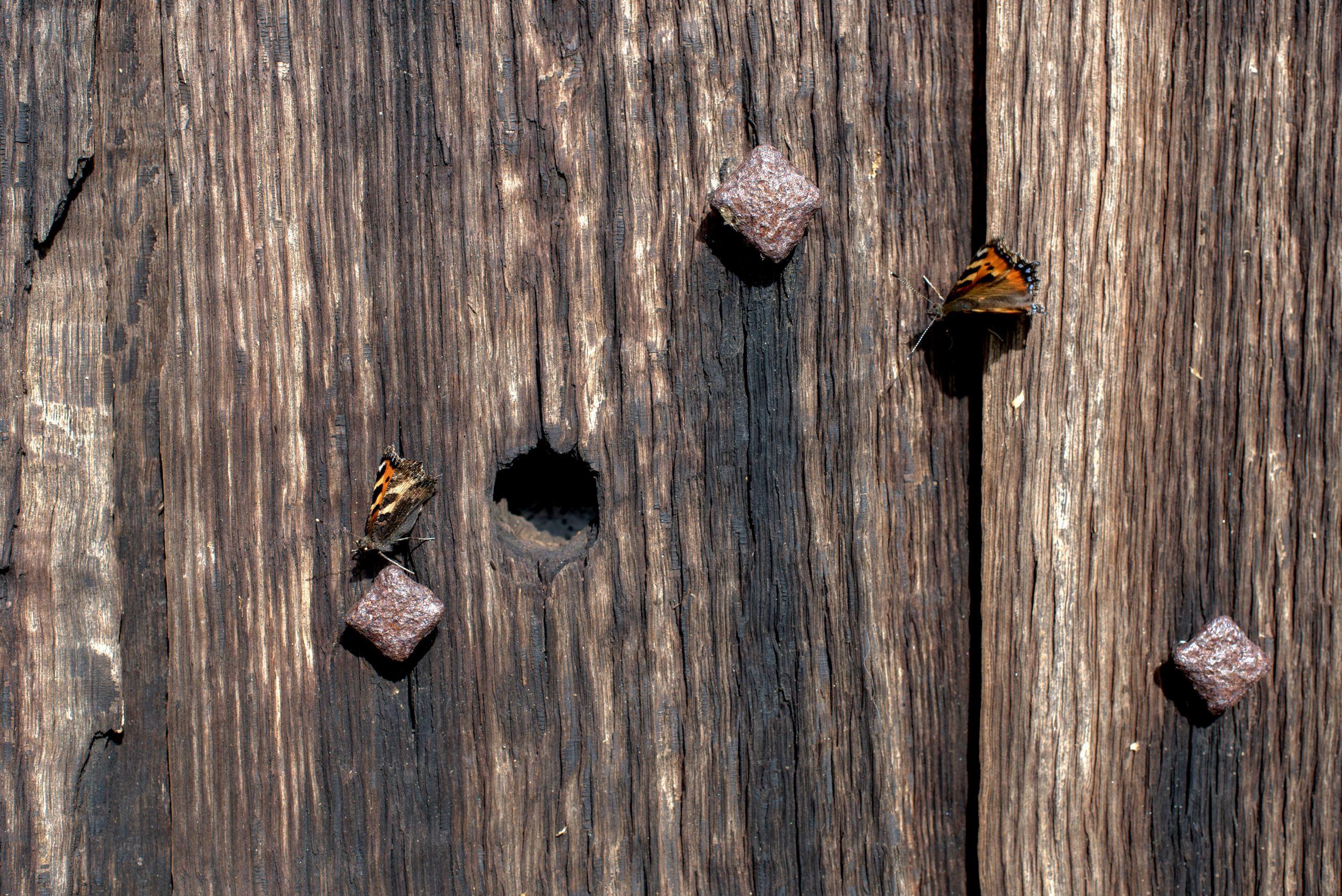 Holes in the WEst door of Pembridge Church